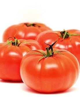 Red Large Tomato ORGANIC  20 SEEDS